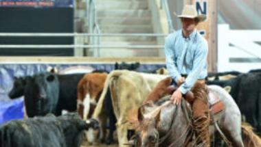 2020 National Cutting Horse Association (NCHA) Futurity