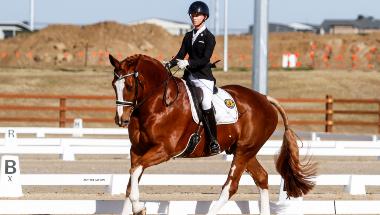 2021 NSW State Dressage Championships